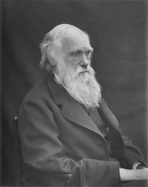 Churches Counter Darwin Birthday Events With 'Creation Sunday,' 'Stop Darwin Day'