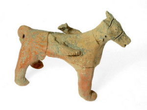 Horse Credit Clara Amit  Israel Antiquities Authority