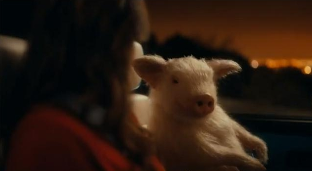 'Disgusting' Geico Insurance Commercial Promotes Bestiality