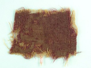 2,000-year-old fabric dyed with murex snail extract