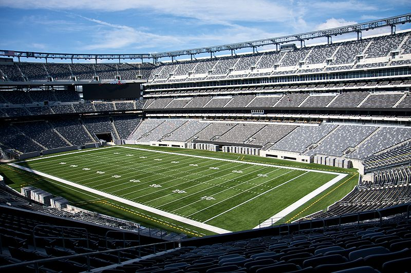 Met Life Stadium Credit Baby Knight