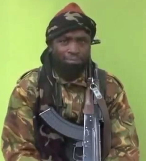 Africa's Boko Haram Calls Upon Muslims Worldwide to 'Pledge Allegiance' to ISIS