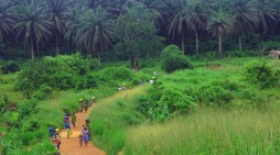 Missionaries in Sierra Leone Provide Aid to Disease Victims