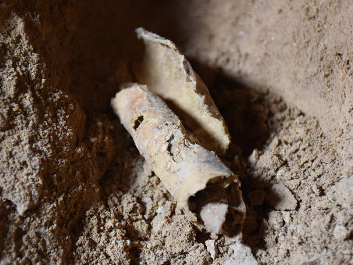 Historic Cave Discovery in Israel Renews Hopes of Finding More Dead Sea Scrolls