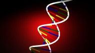 Is the 'Gay Gene' a Myth? Scientists Say Homosexuality Impossible to Determine by DNA