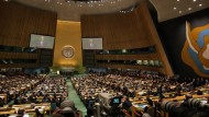 Group Warns UN Treaty on Persons with Disabilities Can Override Will of Parents